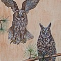 Two Owls by Willie McNeal