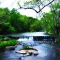 Unami Creek Dam by Bill Cannon