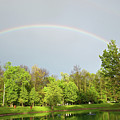 Under The Rainbow by David Arment