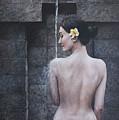 Untamed Beauty by Jan Camerone