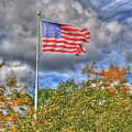 Us Flag 8091 by Guy Whiteley