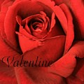 Valentine by Marna Edwards Flavell