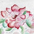Valentine Rose by Brenda Owen