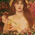 Venus Verticordia by Dante Gabriel Rossetti