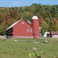 Vermont Farm by Lois Lepisto