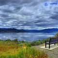 View From A Bench by Tara Turner
