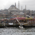 View Of Istanbul by Arvind Garg