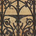 Vintage Iron Scroll Gate 1 by Debbie DeWitt