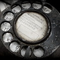 Vintage Telephone by Lainie Wrightson