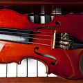 Viola On Piano Keys by Garry Gay