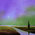 Violet Night by Toni Grote