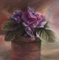 Violets by Patricia Halstead