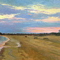 Wades Beach Sundown Study II by Phyllis Tarlow