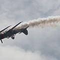 Wafb 09 Yak 52 Aerostar 8 by David Dunham