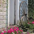 Wagon Wheel by Ann Bridges