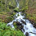 Wahkeena Falls Oregon Waterfall by Dustin K Ryan