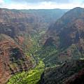 Waiamea Canyon Kauai by Frank Wilson