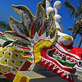 Waikiki Dragon by Elizabeth Hoskinson