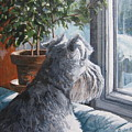 Waiting Patiently by Anda Kett