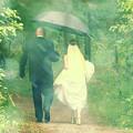 Walk In The Rain by Joel Witmeyer