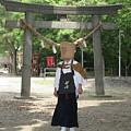 Walk In The Shrine by Masami Iida