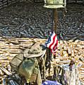 War Dogs Sacrifice by Carolyn Marshall