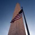Washington Monument Single Flag by Skip Willits