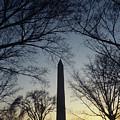 Washington Monument by Steve Williams