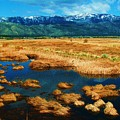 Washoe Valley by Russell  Barton