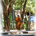 Wat Umong 2 by Bates Clark