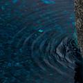Water by Marta Grabska
