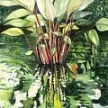 Water Plant by Ileana Carreno