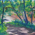 Watercress Beach On The Current River   by Jan Bennicoff