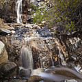 Waterfall At La Jolla Canyon by Greg Clure