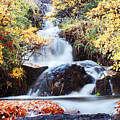 Waterfall In Autumn by Mircea Costina Photography