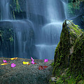 Waterfall02 by Carlos Caetano