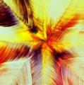 Wax Abstract by Lynda McDonald
