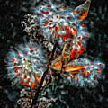 Weed Galaxy Painted Version  by Steve Harrington