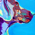 Weimaraner - Blue by Alicia VanNoy Call