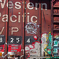 Western Pacific by Anne Cameron Cutri
