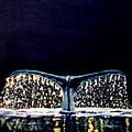 Whale Tail by Stan Hamilton