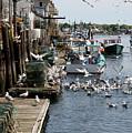 Wharf Action by Lynda Lehmann