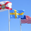 Where Florida Sweden And Us Meet by Warren Thompson