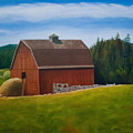 Whidbey Island Barn by Stephen Degan