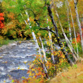 White Mountains Brook by Betty LaRue