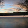 White Oak Pond by Michael Mooney