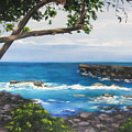 Whittington Beach Park Big Island Hawaii by Denise Lockhart Bush