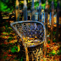 Wicker Chair by Perry Webster