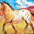 Wild Appaloosa Horse by Jenn Cunningham
