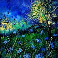 Wild Chocoree by Pol Ledent